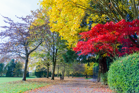 autumn walks local parks london
